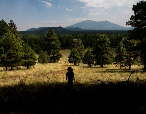 Flagstaff mountains